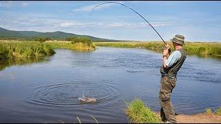 Рыбалка за рыбой осман